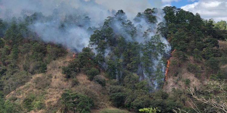 Conred informa acerca del incremento de los incendios forestales