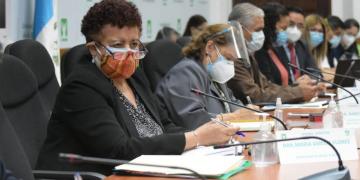 Ministra de Salud Pública, Amelia Flroes
