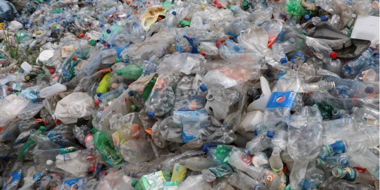 Proyecto piloto Salvemos el Motagua logra recolección de 33 mil libras de plástico