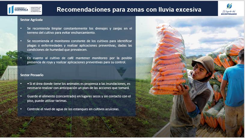 Recomendaciones para protección de cultivos Maga.